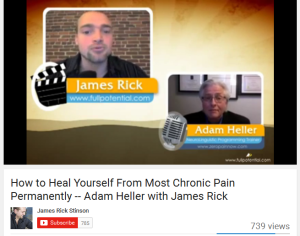 2015-08-09 17_51_10-▶ How to Heal Yourself From Most Chronic Pain Permanently -- Adam Heller with Ja